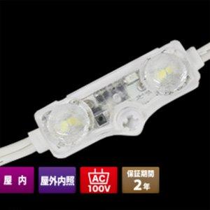 100V 2C-0.9W-6500K【50個セット】