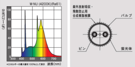 紫外線吸収膜付蛍光灯