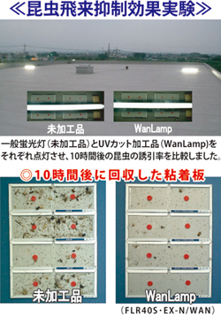 【エバーライツ】飛散防止膜付 UVカット蛍光灯 / UVカット水銀灯