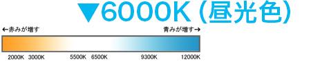6000K(昼光色)